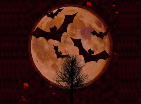 コウモリ(bat)の画像